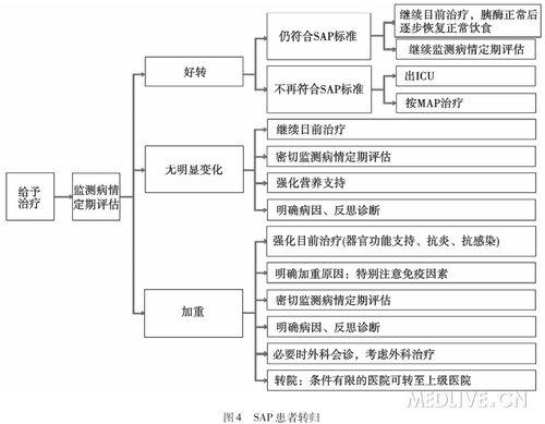 2013急性胰腺炎指南_2013 中国急诊急性胰腺炎临床实践指南