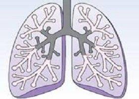 心包内支气管囊肿一例