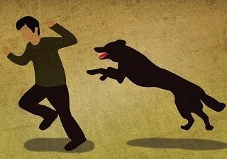 狂犬病人真的会学狗叫,像丧尸一样咬人吗?